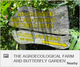 activities-scroller-agroecological-farm